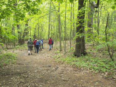 Ciesluk property trail p5210027